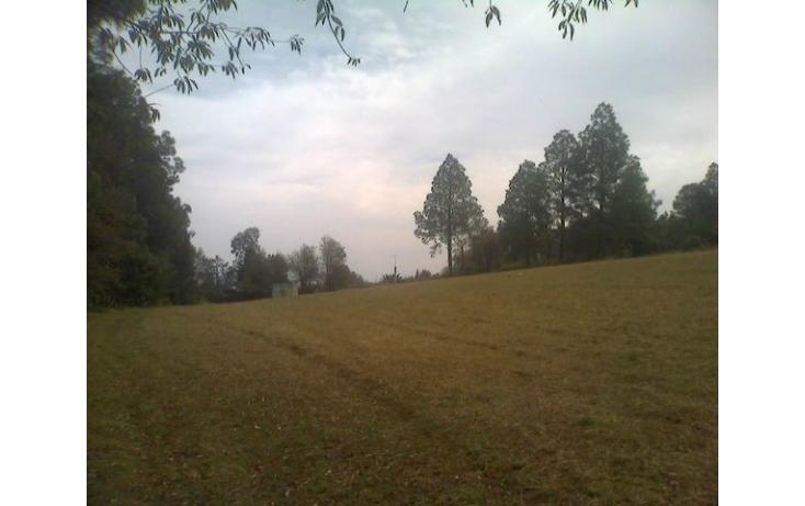 Foto de rancho en venta en tolucamorelia, unión de los berros, villa victoria, estado de méxico, 597957 no 21