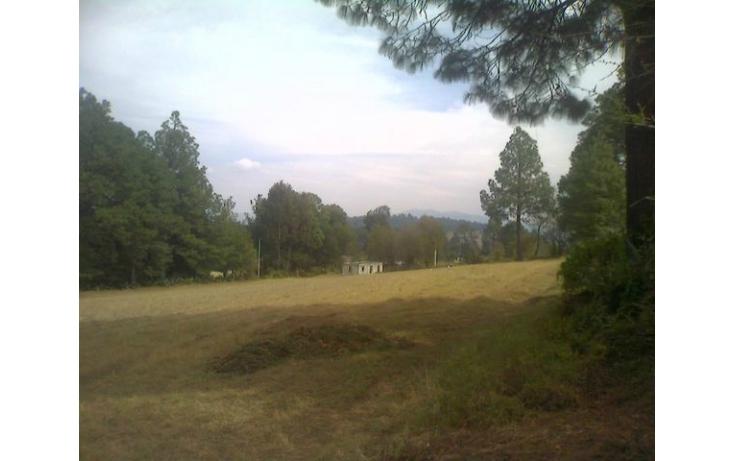 Foto de rancho en venta en tolucamorelia, unión de los berros, villa victoria, estado de méxico, 597957 no 24