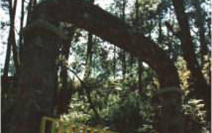 Foto de casa en venta en tolucatemascaltepec km 45, temascaltepec de gonzález, temascaltepec, estado de méxico, 1708478 no 03