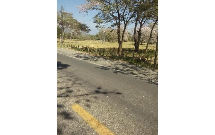 Foto de terreno habitacional en venta en  , tonalá 2000, tonalá, chiapas, 855369 No. 01