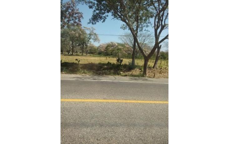 Foto de terreno habitacional en venta en  , tonalá 2000, tonalá, chiapas, 855369 No. 05