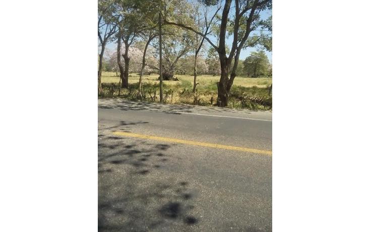 Foto de terreno habitacional en venta en  , tonalá 2000, tonalá, chiapas, 855369 No. 06