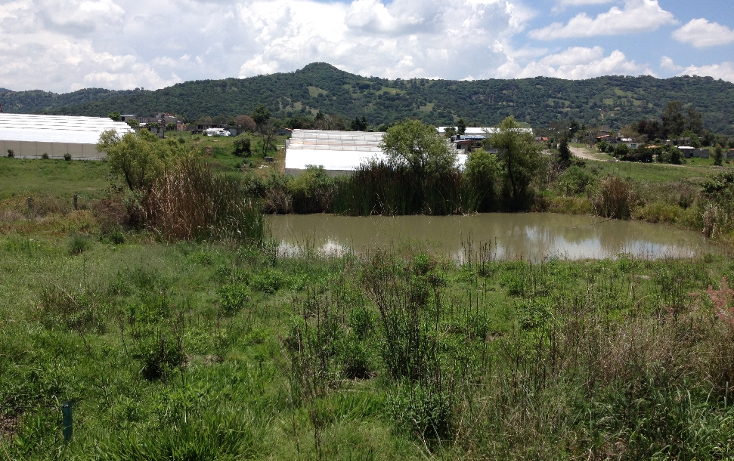 Foto de terreno comercial en venta en  , tonatico, tonatico, m?xico, 1046107 No. 04
