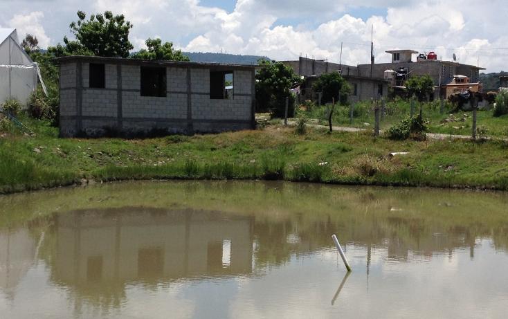Foto de terreno comercial en venta en  , tonatico, tonatico, m?xico, 1046107 No. 05