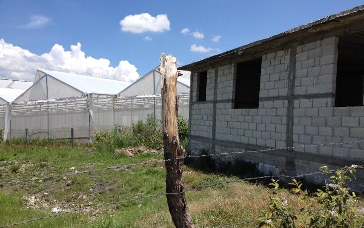 Foto de terreno comercial en venta en  , tonatico, tonatico, m?xico, 1046107 No. 06