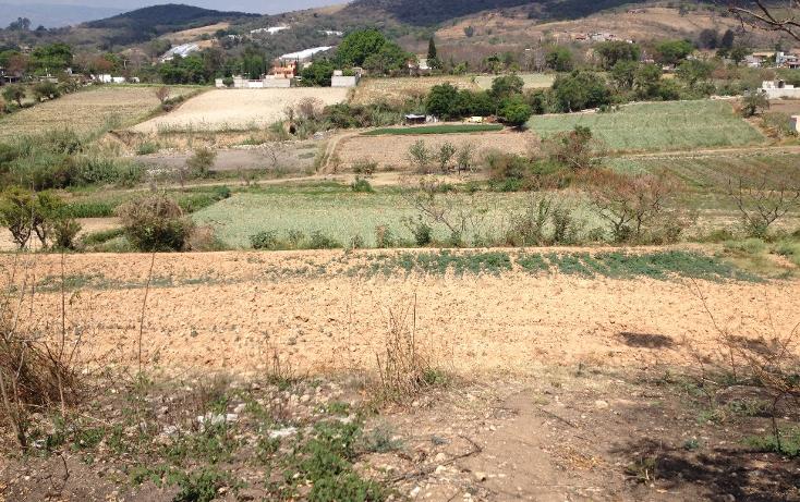 Foto de terreno comercial en venta en  , tonatico, tonatico, méxico, 1097891 No. 01