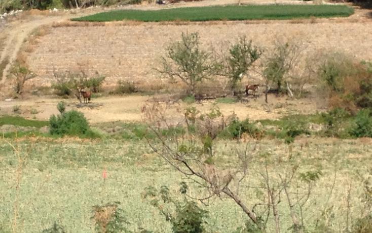 Foto de terreno comercial en venta en  , tonatico, tonatico, méxico, 1097891 No. 03
