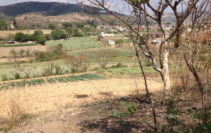 Foto de terreno comercial en venta en  , tonatico, tonatico, méxico, 1097891 No. 04