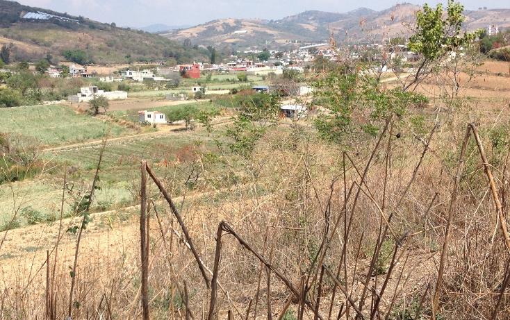 Foto de terreno comercial en venta en  , tonatico, tonatico, méxico, 1097891 No. 05
