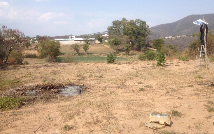 Foto de terreno comercial en venta en  , tonatico, tonatico, m?xico, 1127031 No. 04