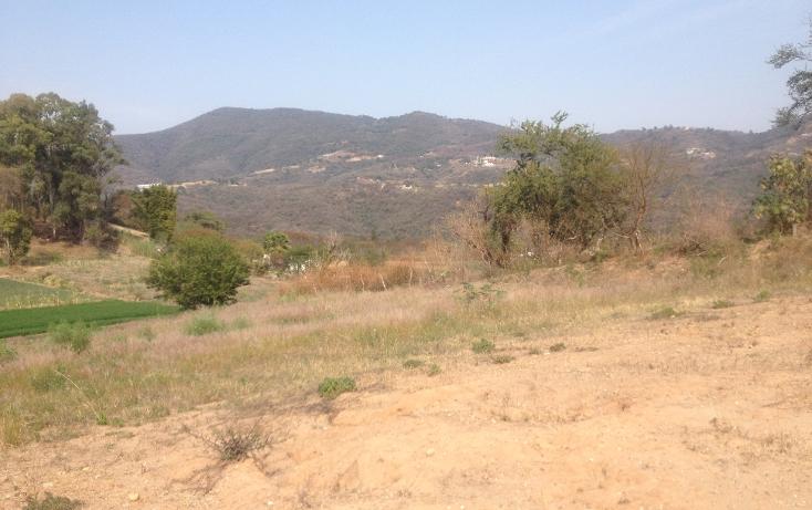 Foto de terreno comercial en venta en  , tonatico, tonatico, m?xico, 1127031 No. 05