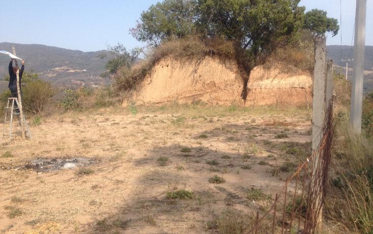 Foto de terreno comercial en venta en  , tonatico, tonatico, m?xico, 1127031 No. 06