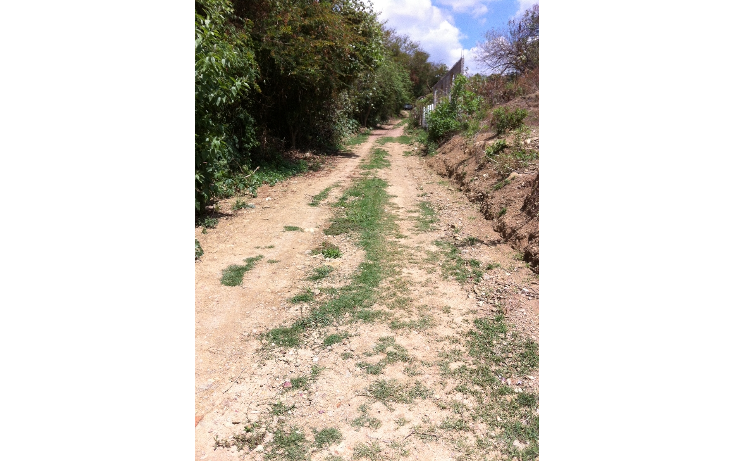 Foto de terreno comercial en venta en  , tonatico, tonatico, méxico, 1169853 No. 02
