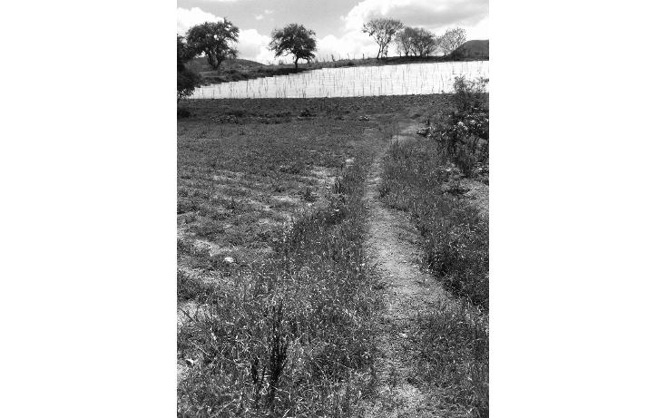 Foto de terreno comercial en venta en  , tonatico, tonatico, méxico, 1169853 No. 04