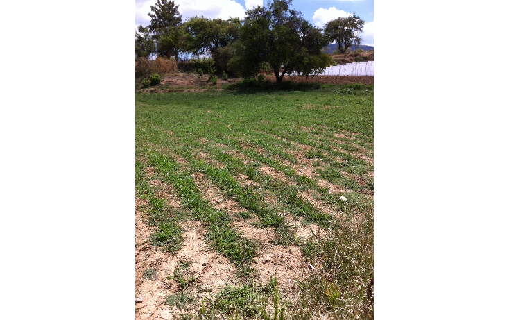 Foto de terreno comercial en venta en  , tonatico, tonatico, méxico, 1169853 No. 05
