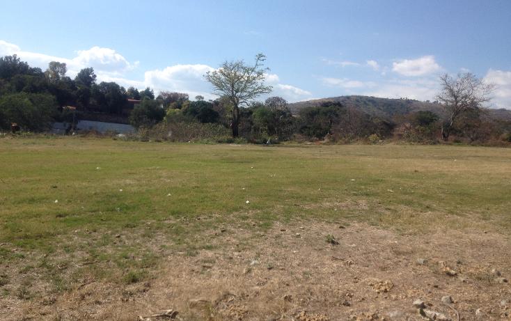 Foto de terreno comercial en venta en  , tonatico, tonatico, méxico, 1190957 No. 04