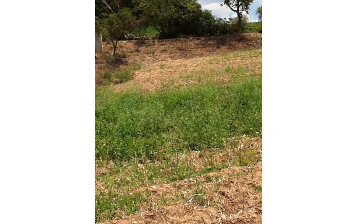 Foto de terreno comercial en venta en  , tonatico, tonatico, méxico, 946561 No. 02
