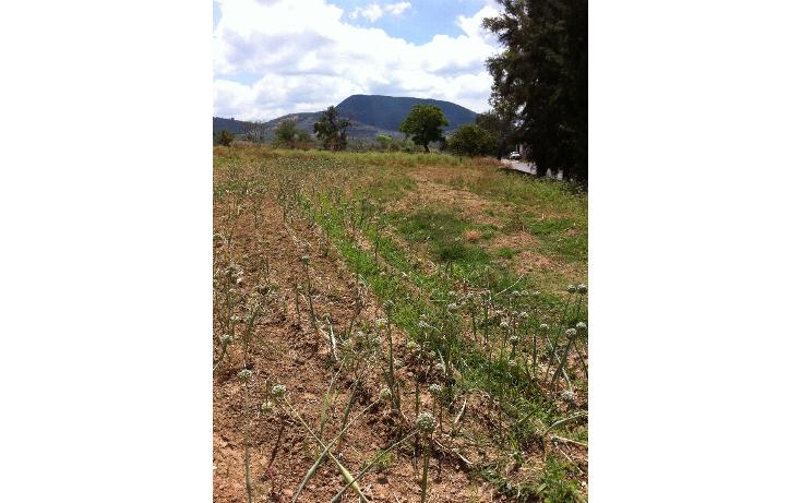 Foto de terreno comercial en venta en  , tonatico, tonatico, méxico, 946561 No. 03