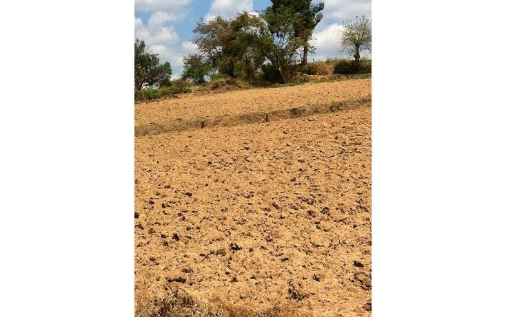 Foto de terreno comercial en venta en  , tonatico, tonatico, méxico, 946561 No. 04