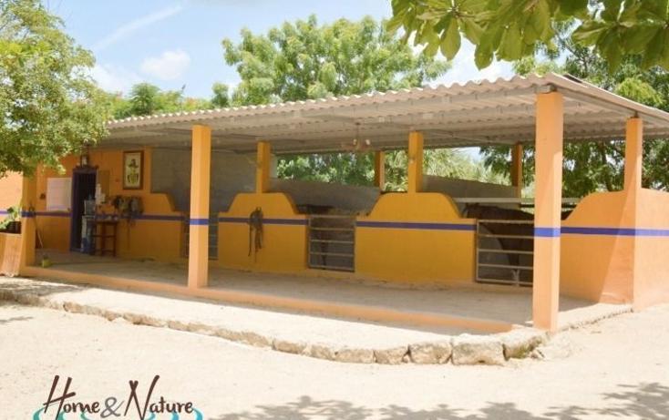 Foto de rancho en venta en  , too, mocochá, yucatán, 948735 No. 05
