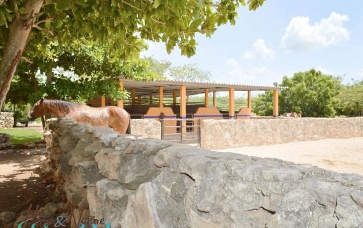 Foto de rancho en venta en  , too, mocochá, yucatán, 948735 No. 10