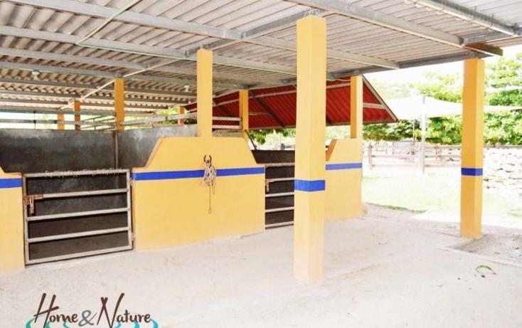 Foto de rancho en venta en  , too, mocochá, yucatán, 948735 No. 13