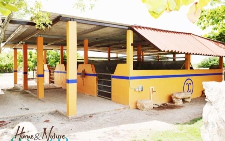 Foto de rancho en venta en  , too, mocochá, yucatán, 948735 No. 15