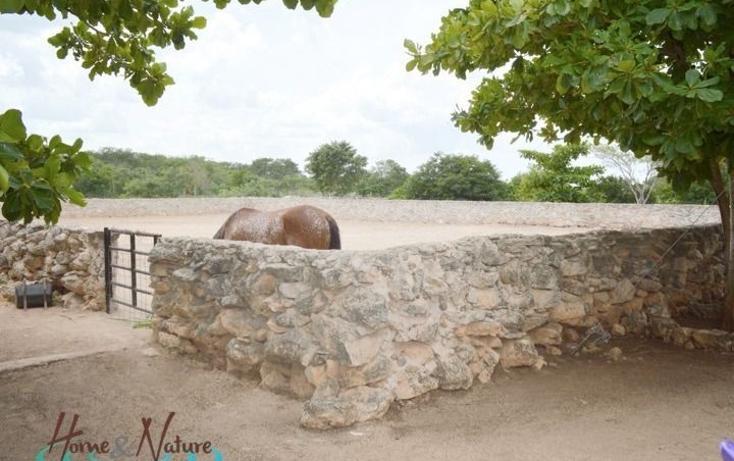 Foto de rancho en venta en  , too, mocochá, yucatán, 948735 No. 18