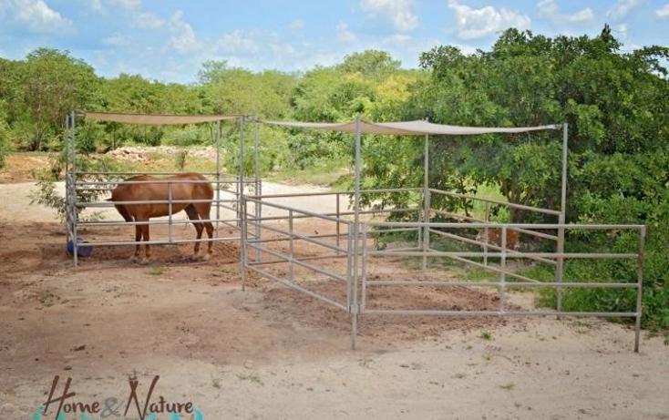 Foto de rancho en venta en  , too, mocochá, yucatán, 948735 No. 20