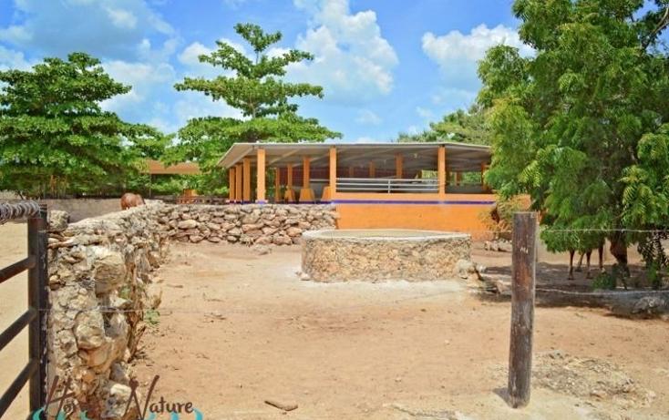 Foto de rancho en venta en  , too, mocochá, yucatán, 948735 No. 21