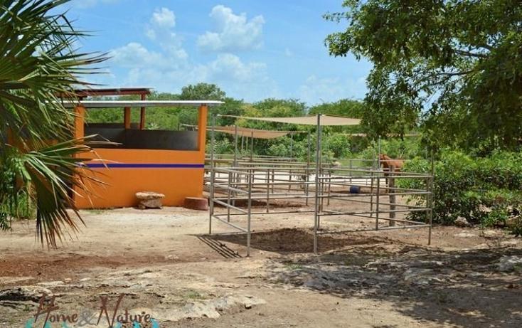 Foto de rancho en venta en  , too, mocochá, yucatán, 948735 No. 26