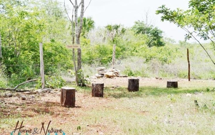 Foto de rancho en venta en  , too, mocochá, yucatán, 948735 No. 28