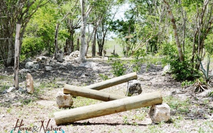 Foto de rancho en venta en  , too, mocochá, yucatán, 948735 No. 30