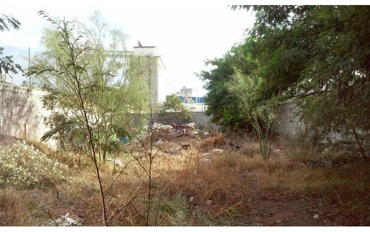 Foto de terreno habitacional en venta en  , torreón centro, torreón, coahuila de zaragoza, 1501823 No. 05