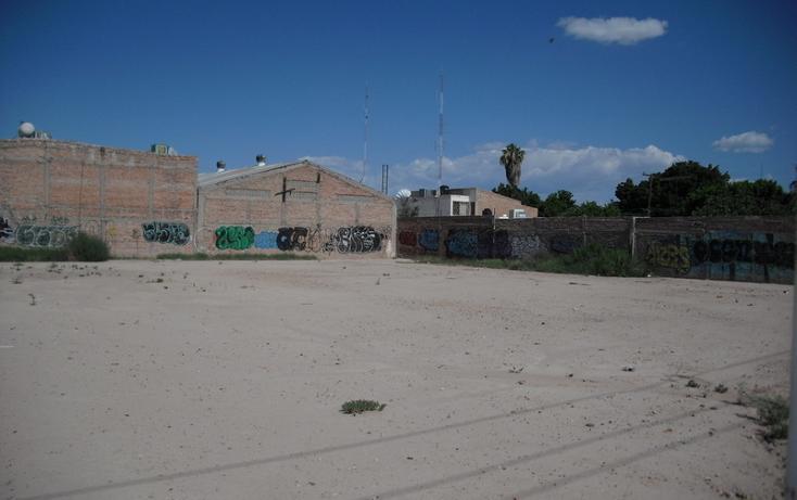 Foto de terreno habitacional en renta en  , torreón centro, torreón, coahuila de zaragoza, 982069 No. 01