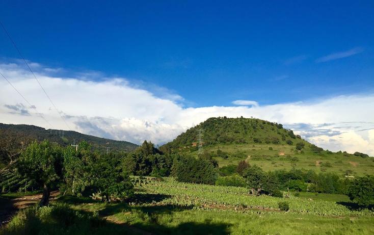 Foto de terreno habitacional en venta en  , totolapan, totolapan, morelos, 1044449 No. 01