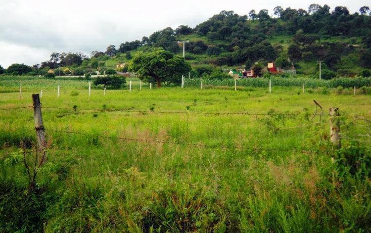 Foto de terreno habitacional en venta en  , totolapan, totolapan, morelos, 1044449 No. 03