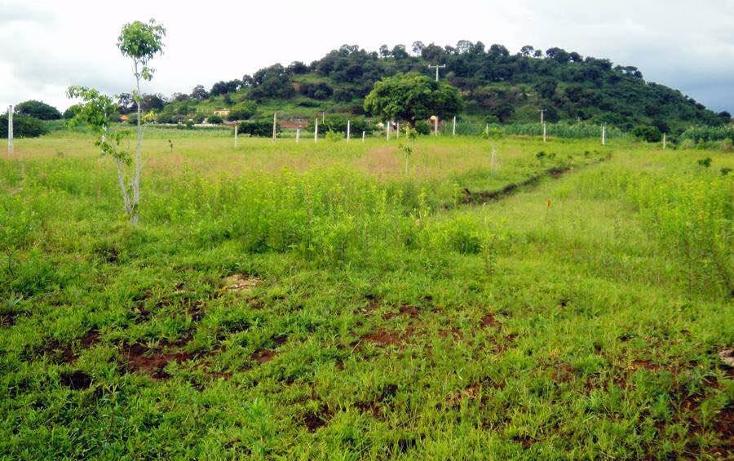 Foto de terreno habitacional en venta en  , totolapan, totolapan, morelos, 1044449 No. 04