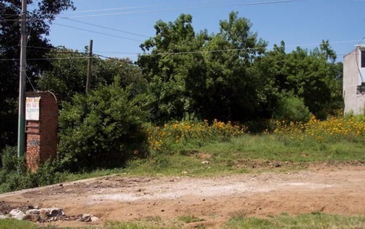 Foto de terreno habitacional en venta en  , totolapan, totolapan, morelos, 1311753 No. 02