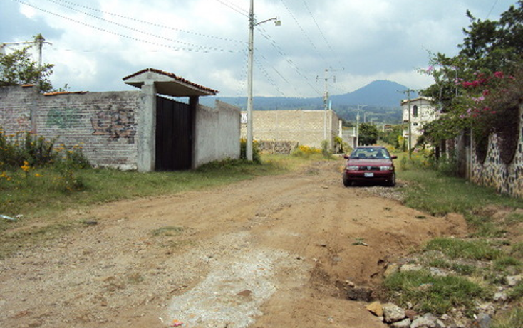 Foto de terreno habitacional en venta en  , totolapan, totolapan, morelos, 1311753 No. 06