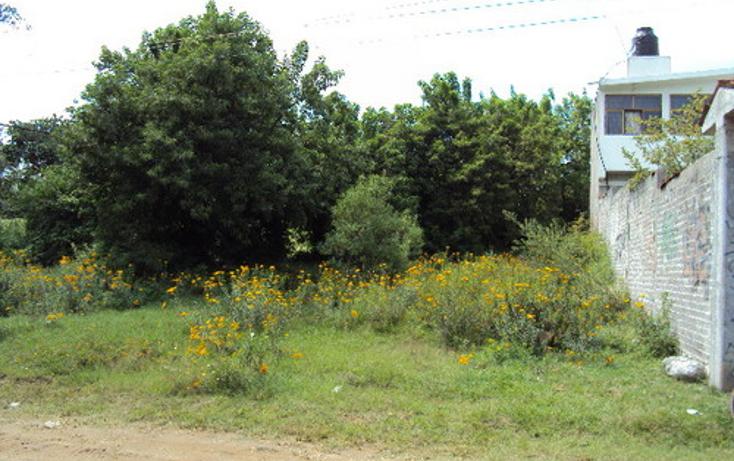 Foto de terreno habitacional en venta en  , totolapan, totolapan, morelos, 1311753 No. 07