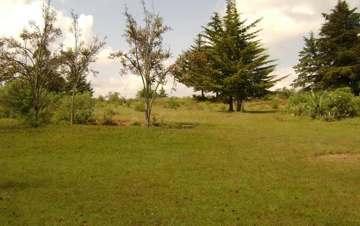 Foto de terreno habitacional en venta en  , trigueros, tlalpujahua, michoacán de ocampo, 1110165 No. 01