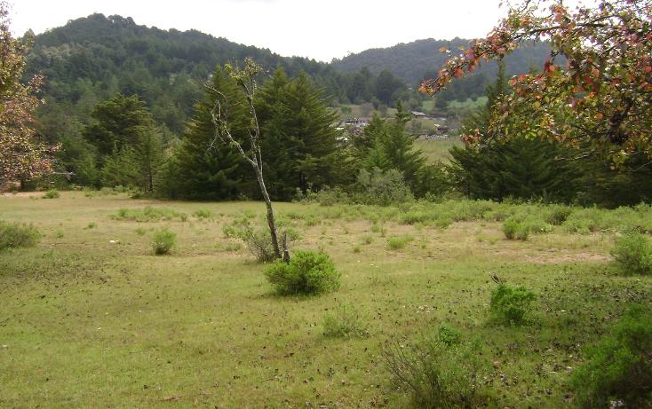 Foto de terreno habitacional en venta en  , trigueros, tlalpujahua, michoacán de ocampo, 1110165 No. 02