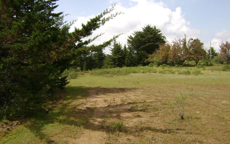 Foto de terreno habitacional en venta en  , trigueros, tlalpujahua, michoacán de ocampo, 1110165 No. 04