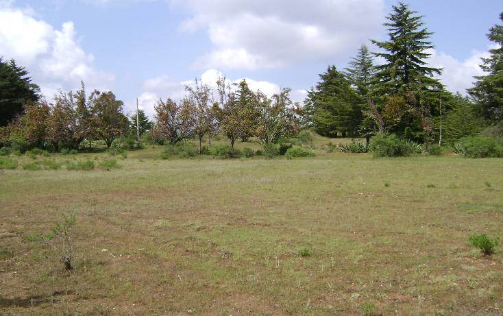 Foto de terreno habitacional en venta en  , trigueros, tlalpujahua, michoacán de ocampo, 1110165 No. 06