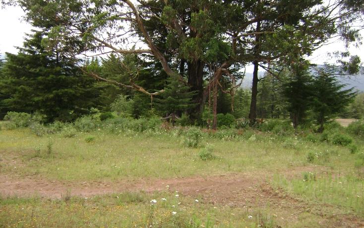 Foto de terreno habitacional en venta en  , trigueros, tlalpujahua, michoacán de ocampo, 1110165 No. 08