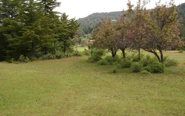 Foto de terreno habitacional en venta en  , trigueros, tlalpujahua, michoacán de ocampo, 1110165 No. 09