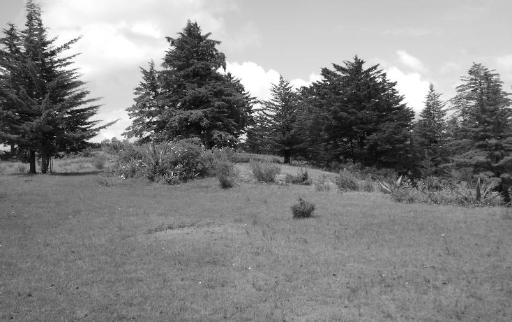 Foto de terreno habitacional en venta en  , trigueros, tlalpujahua, michoacán de ocampo, 1110165 No. 10