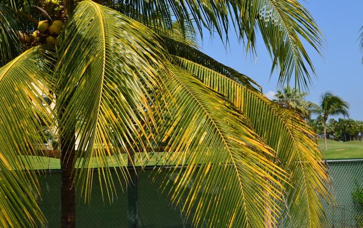 Foto de terreno habitacional en venta en tucanes , nuevo vallarta, bah?a de banderas, nayarit, 454398 No. 03