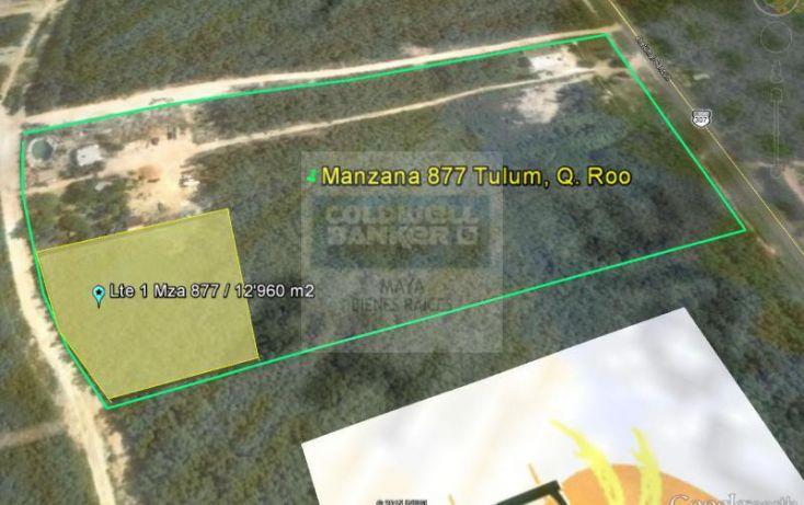 Foto de terreno habitacional en venta en tulum 913, tulum centro, tulum, quintana roo, 784951 no 06